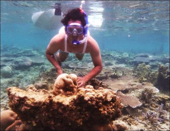 Pulau Kotok - Daftar Tempat Liburan di Kepulauan Seribu yang Menggoda