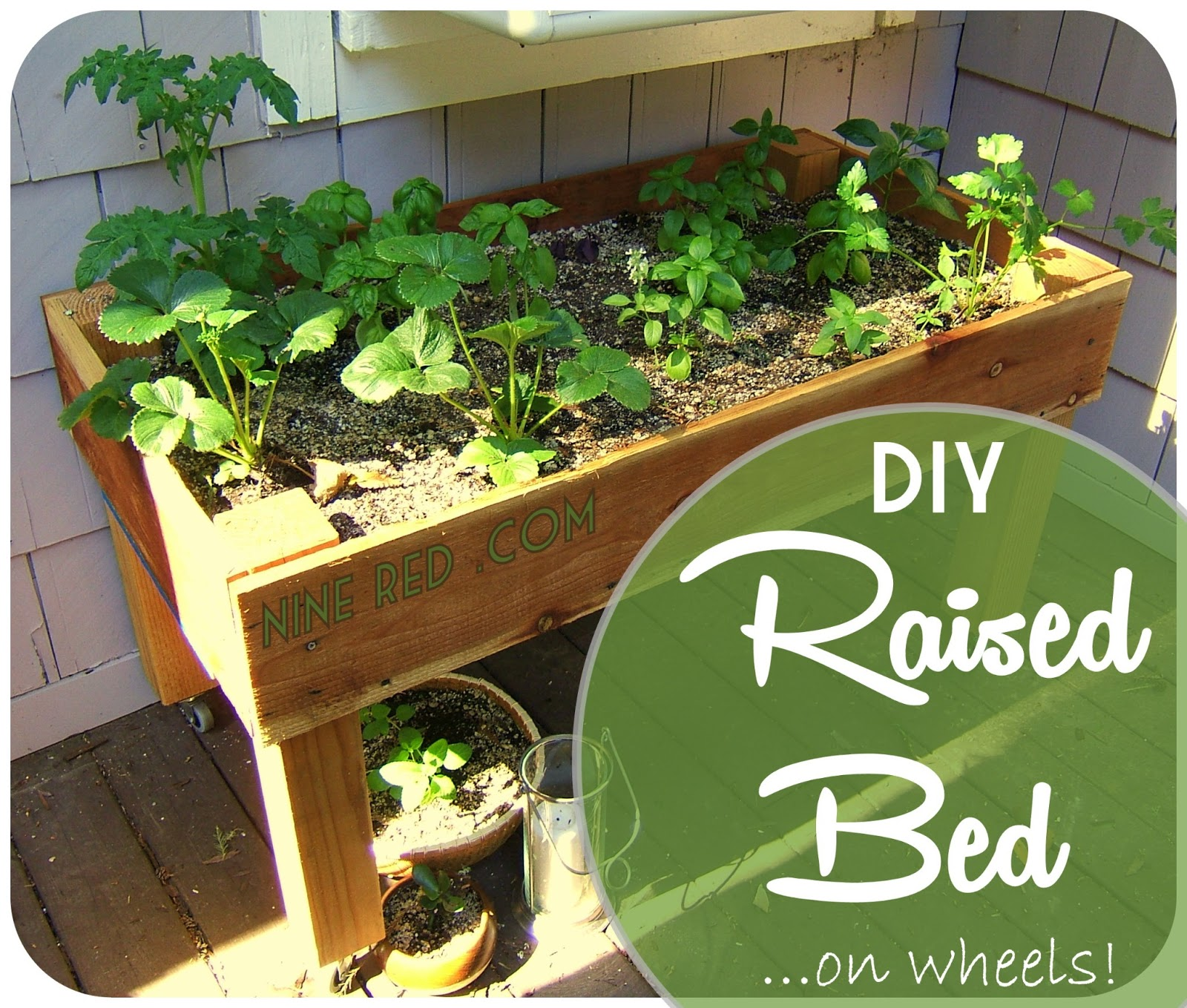 Nine Red DIY Simple Raised Bed on wheels