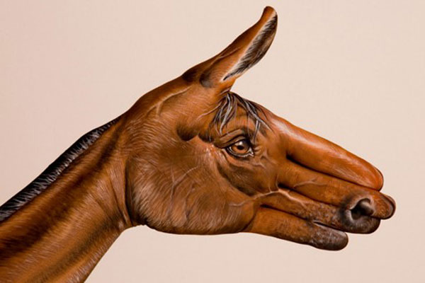 Horse-Brown-on-white
