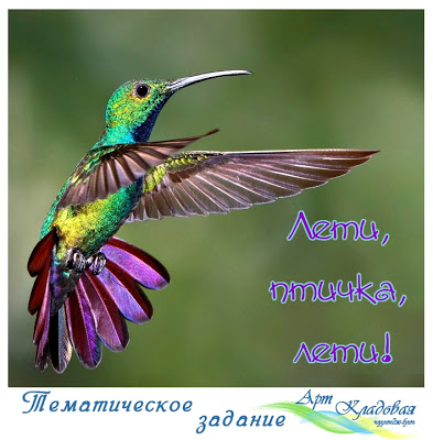 "ТЗ ""Лети, птичка, лети"" до 23/06"