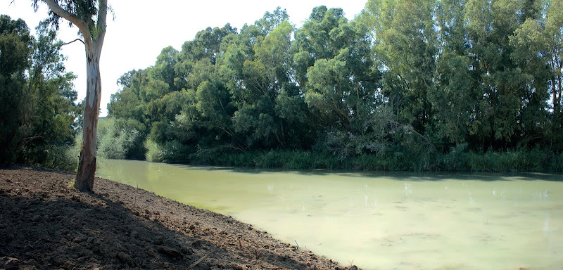 El guadalete procedente del Puente de Cartuja (septiembre 2011))