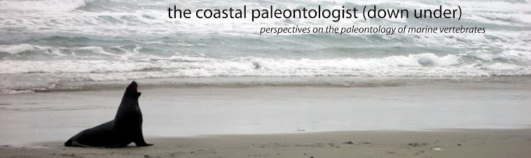 The Coastal Paleontologist down under