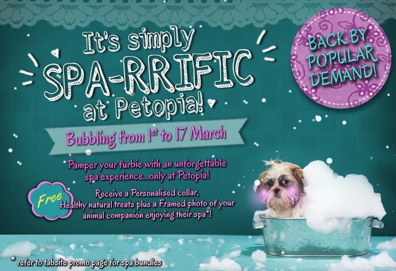Petopia's Bubbling Spa-rrific Offer