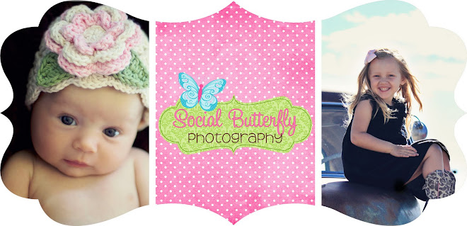 Social Butterfly Photography