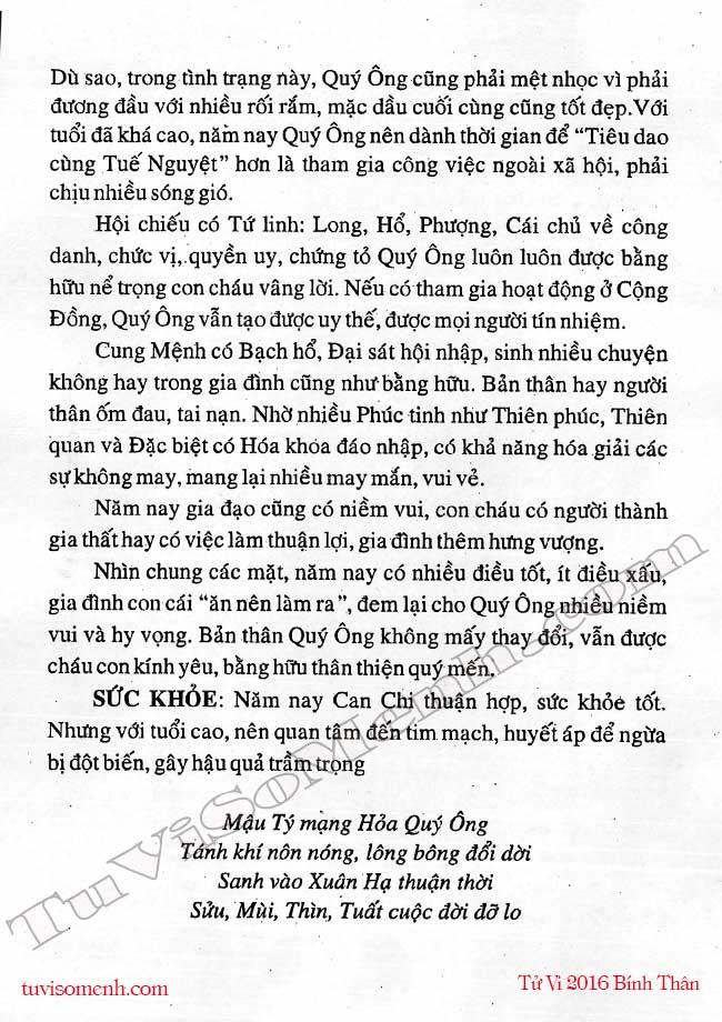 Mau Ty nam 2016