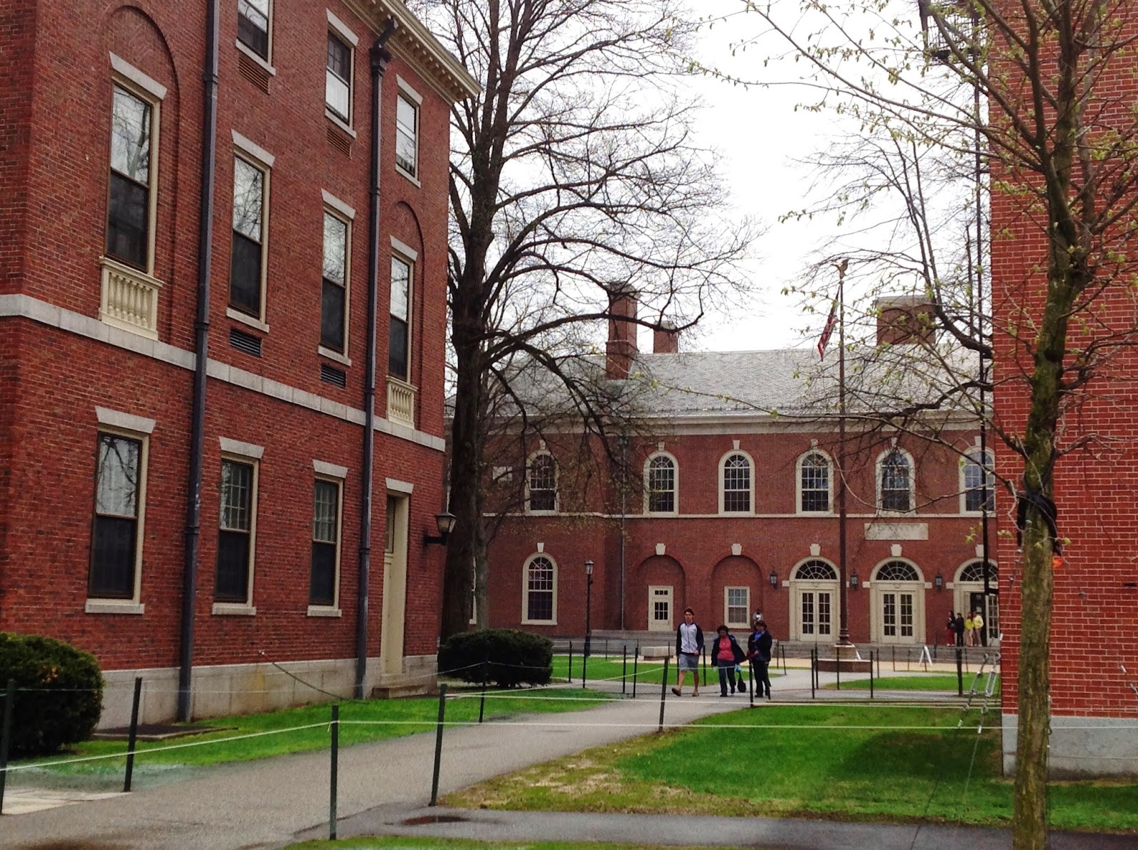 Life From The Roots Phillips Academy At Andover Massachusetts On