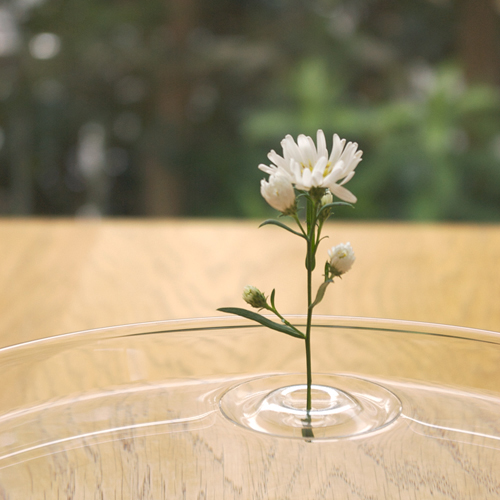 Floating Vase / RIPPLE 水に浮かべる一輪挿し
