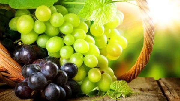 Coba Ketahui 4 Khasiat Hebat Buah Anggur Ini