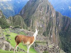 Tours a Machu Picchu Turismo en Cusco Peru