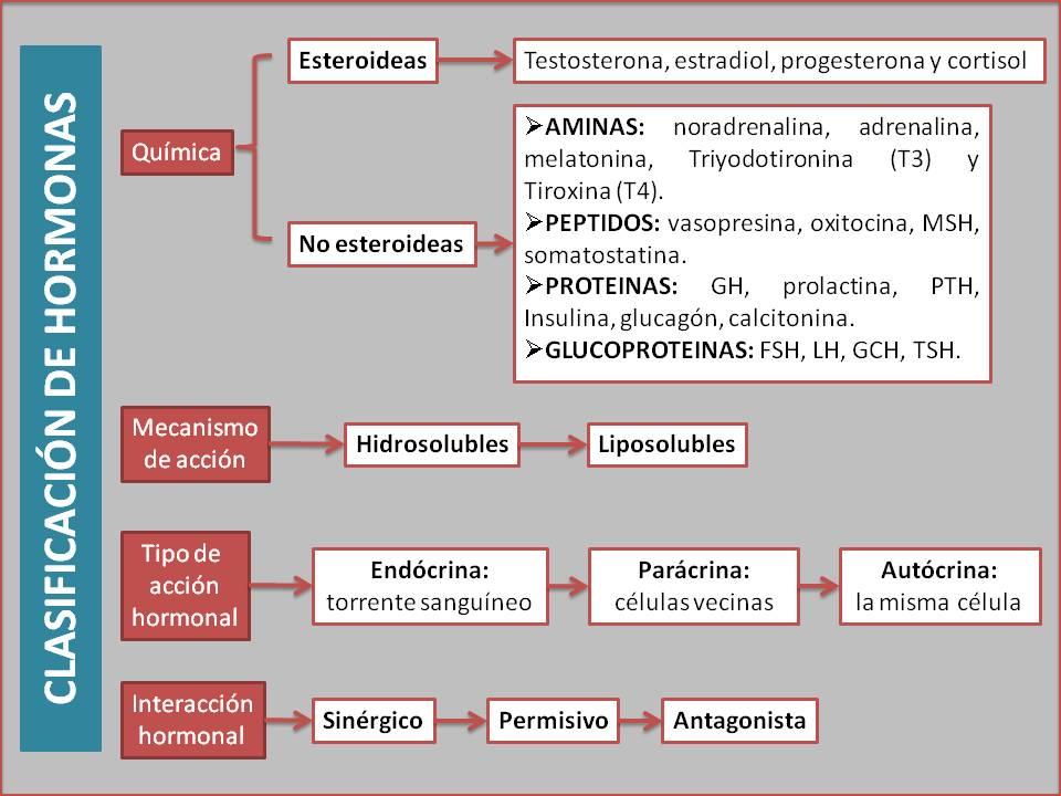 mecanismo de accion antiinflamatorios no esteroideos pdf