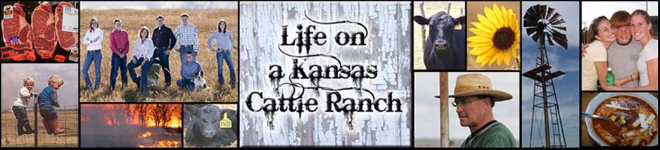 Life On a Kansas Cattle Ranch