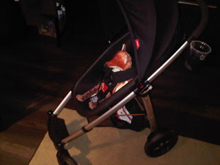 Vancouver Dad Insight Into Baby Stuff Phil Teds Smart Stroller