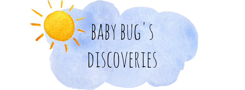 Baby Bug's Discoveries