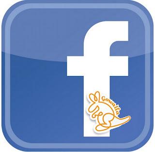 Facebook Gowalla badges