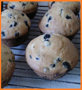Homemade blueberry muffins a la wild blueberries!