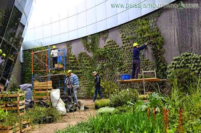 Poda valencia c mo construir un jard n vertical - Construir jardin vertical ...