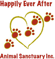 Happily Ever After Animal Shelter