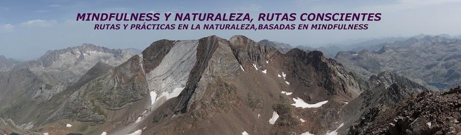 Mindfulness y naturaleza:rutas conscientes
