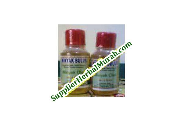 Grosir Minyak Bulus Al Kautsar 10 Botol