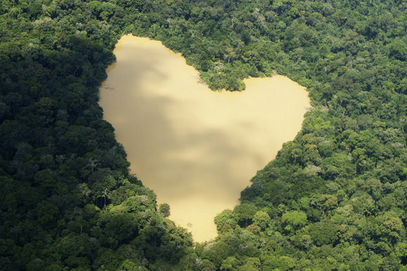 Srce kao prirodno čudo  Rsz_rtr2m9qe