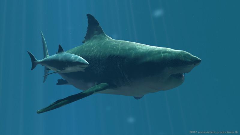 el megalodón o megalodonte fue un gran tiburón el más