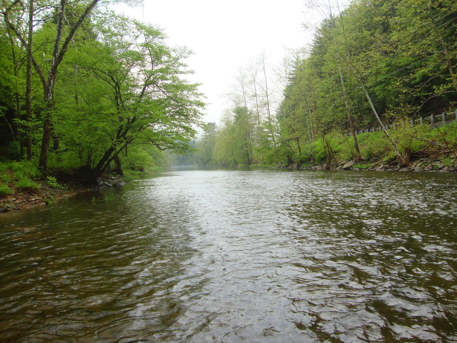 Streamside Tales Variety On Kettle Creek