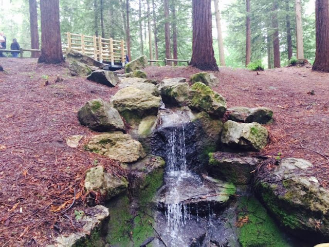Centerparcs Longleat Forest
