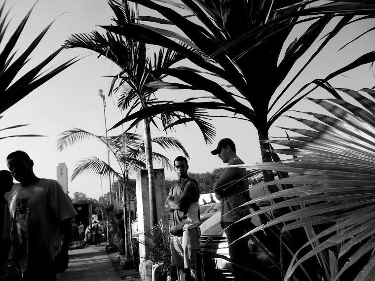CA  _palmeiras_ sao paulo - SP - BRASIL