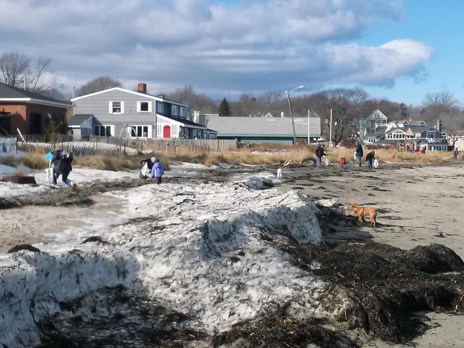 Nh marine debris adopt a beach program expands to south for Bjs portland maine