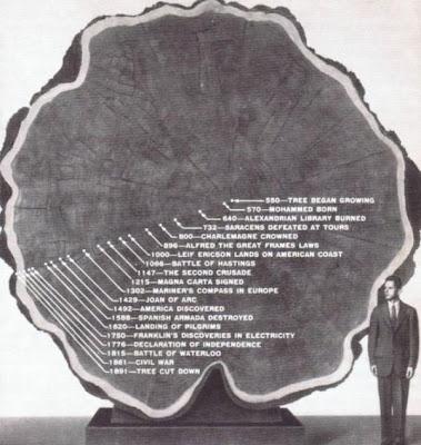 MARK TWAIN TREE