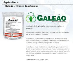 Galeão - Imidacloprid