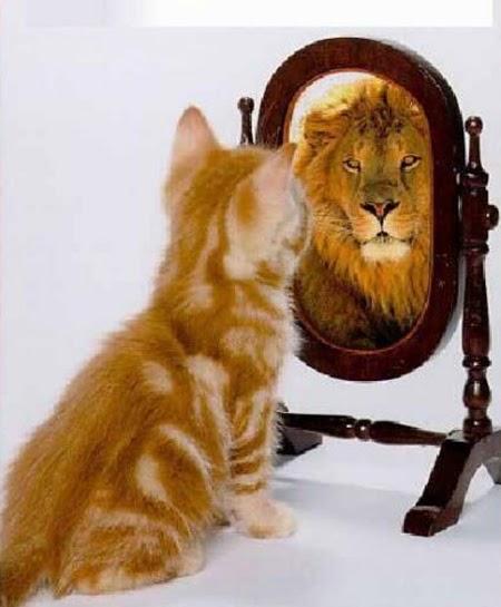¿Quieres encontrar al amor de tu vida? Párate frente al espejo mírate y seguro lo hallarlas.