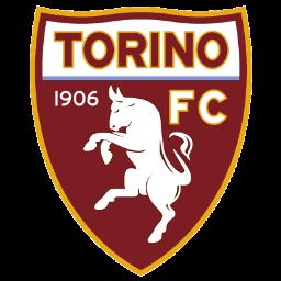 Torino Italian club