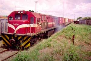 Mozambique Train
