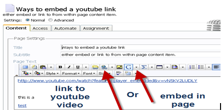 Embed Hyperlink to Video (Windows and Mac)