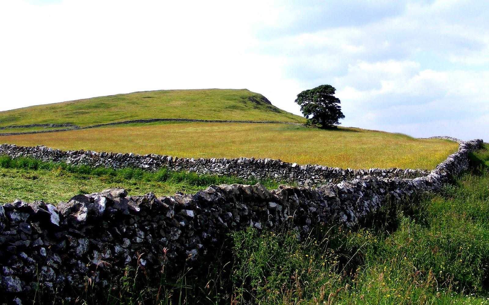Hills over Alstonefield