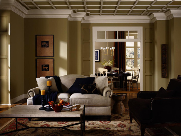 SherwinWilliams Living Room Color Ideas