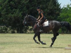 """""""El cariño que te brinda el caballo es mas fuerte"""