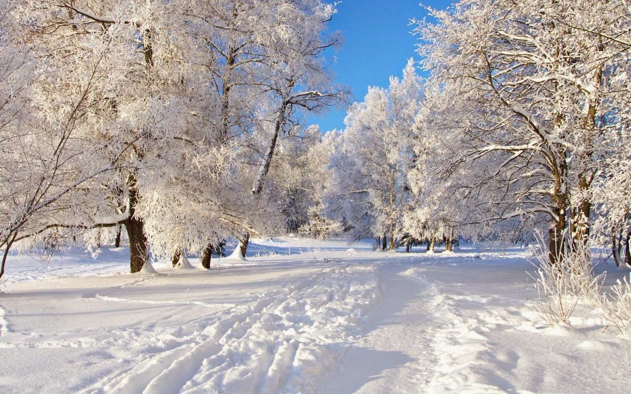 essay on four seasons in pakistan