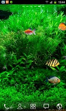 Fish Tank Live Wallpaper 3.jpg