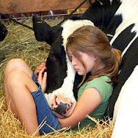 Carinho e compaixão