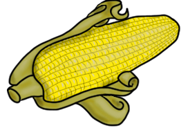 http://www.teacherspayteachers.com/Product/Harvest-Clip-Art