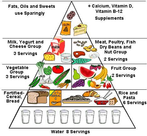 Gambar Nutrisi Makanan Gambar Nutrisi Makanan