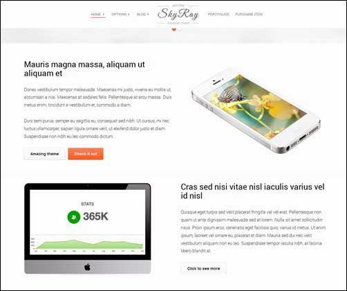 Skyray – Business Presentation Retina Theme