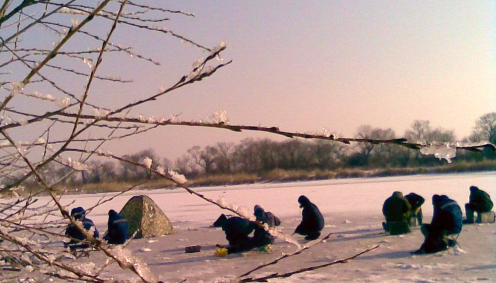 На тесто рыба лучше всего ловится весной