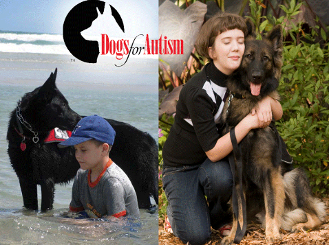 How Do I Get An Autistic Trained Dog