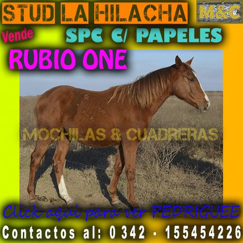 SLH - RUBIO ONE