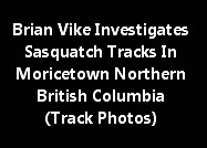 Brian Vike Investigates Sasquatch Tracks In Northern British Columbia (Track Photos)
