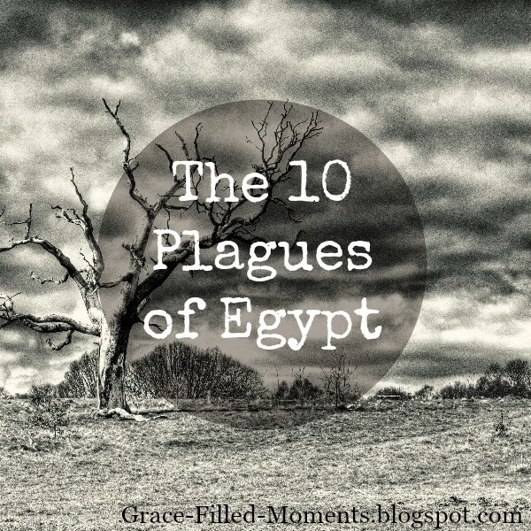 http://grace-filled-moments.blogspot.com/2015/01/the-10-plagues-of-egypt-blogging.html