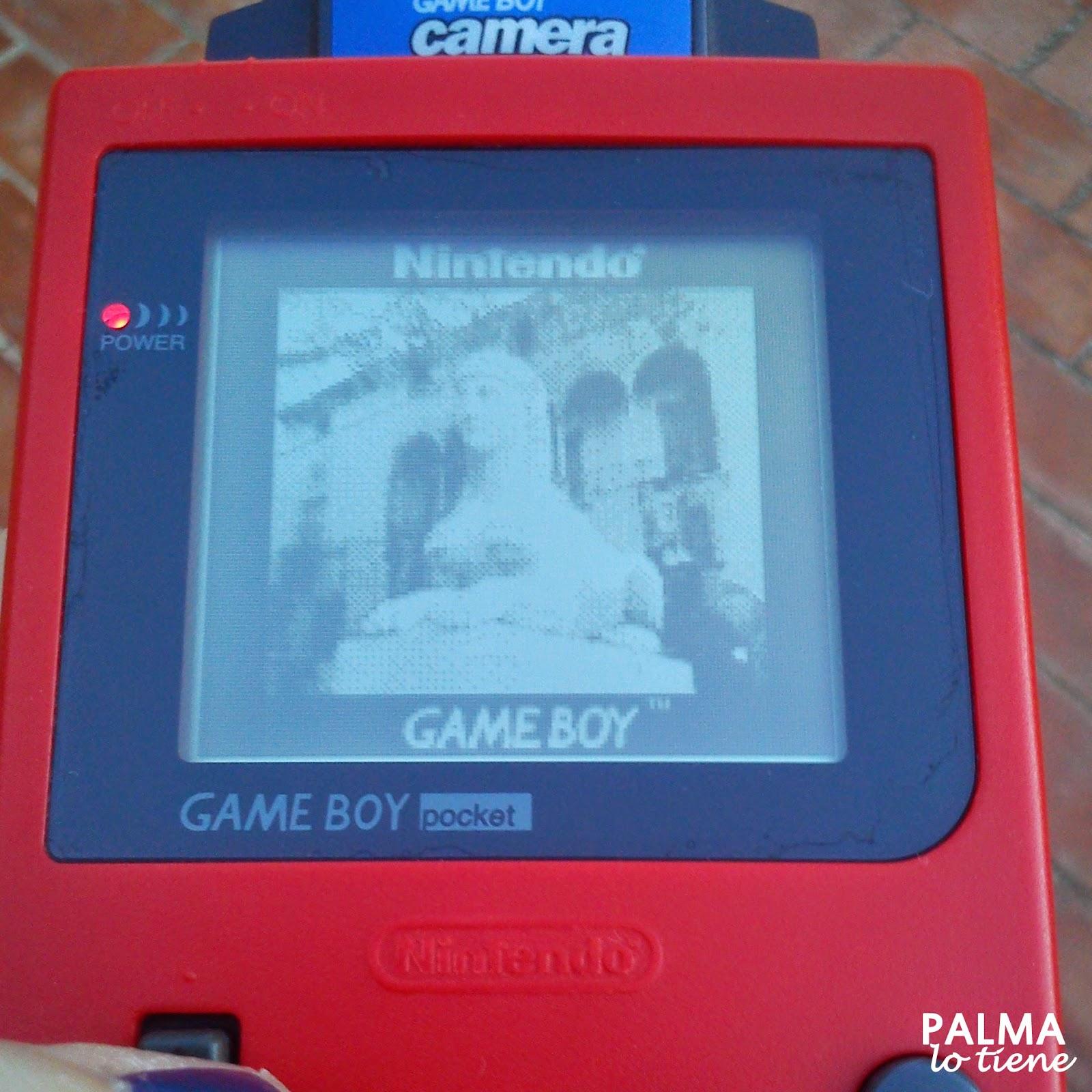 http://palmalotiene.blogspot.com.es/2014/09/palma-atrapada-en-la-game-boy-camera.html